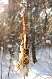 Handmade улавливатель мечты colorfull в снежном лесе Стоковые Фото