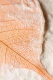 врезанная handmade бумага листьев Стоковое Изображение RF