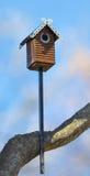 Высекаенная деревянная коробка гнезда handmade Стоковое фото RF