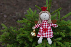 Handmade angel doll on the tree Stock Images
