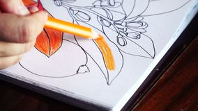 The handmade of artists. Slow motion The handmade of pencil coloring stock video