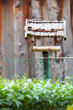 Handmade bird feeder outdoor nature Royalty Free Stock Images