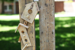 Handmade bird house Stock Image