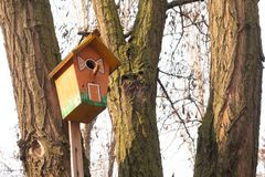 Handmade birdhouse hanging on a tree in the orchard. Hand wood shelter for birds to spend the wintertime.Wooden nesting box hangs royalty free stock photography