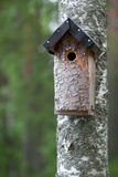 Handmade birdhouse on tree Stock Photo