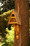 Handmade birdhouse on tree Royalty Free Stock Photography
