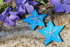 Handmade blue clay earrings on the nature background Stock Photo