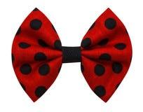 Handmade bow tie isolated stock photo