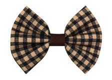 Handmade bow tie royalty free stock image