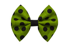 Handmade bow tie Royalty Free Stock Photography