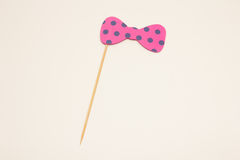 Handmade bow tie shaped props. Handmade bow tie props for funny photograps Stock Image