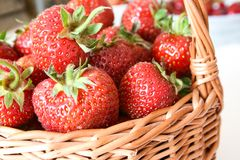 Handmade braided wicker basket with strawberries stock images
