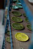 Handmade ceramic plates Stock Image