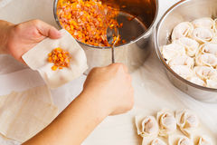 Handmade Chinese dumplings Stock Photography