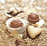 Handmade chocolate heart truffle Royalty Free Stock Photo