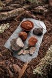 Handmade chocolates ball Royalty Free Stock Photo