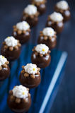 Handmade chocolates with chestnut Stock Images