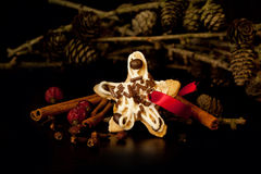 Handmade Christmas cookie star, pine cones and spices on dark ba Stock Photography