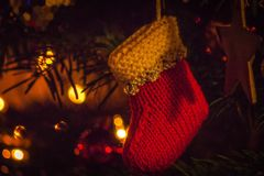 Handmade Christmas Stocking Decoration. Handmade knitted Christmas stocking decoration hanging in tree Stock Photography