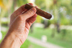 Handmade cigar in male hand, close-up Stock Images