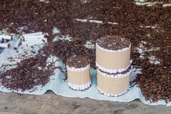 Handmade cigarettes. At Belen Market in Iquitos stock image