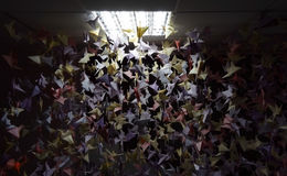 Handmade colored origami cranes on ceiling strings Stock Images