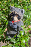 Handmade cute raccoon. Sam made in the technique of felting is sitting on a tree with a green leaf Royalty Free Stock Image
