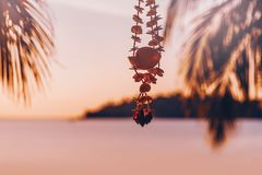 Handmade decoration made of sea shells on sunset on the beach Royalty Free Stock Photos