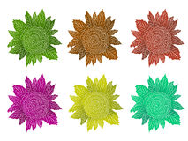 Decorative Flower Pack Stock Photo