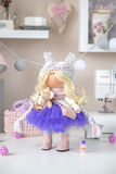 Handmade doll Royalty Free Stock Images