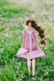 A handmade doll on the grass background Royalty Free Stock Photo