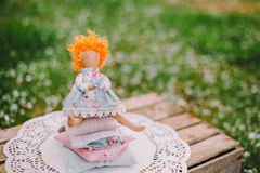 A handmade doll on the grass background Royalty Free Stock Photos