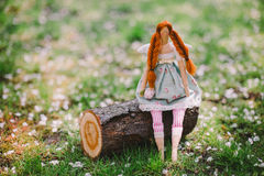 A handmade doll on the grass background Royalty Free Stock Image