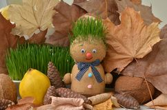 Handmade doll with green grass hair. Autumn still life.
