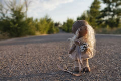 Handmade doll stands alone on a country road Stock Photography