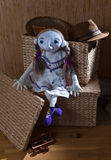 Handmade doll in white dress Stock Photography