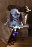 Handmade doll in white dress Stock Photography