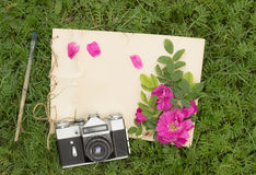 Handmade drawing pad with flowers and leaves of wild rose. Old brush and camera on the background of grass Stock Photo
