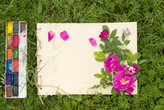 Handmade drawing pad with flowers and leaves of wild rose,. Watercolor paints and brush on the background of grass Stock Photos