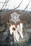 Handmade dream catcher with white doily on background of branche Royalty Free Stock Photography