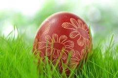 Handmade Easter egg on the grass Stock Photography