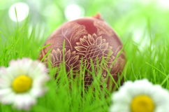 Handmade Easter egg on the grass Royalty Free Stock Photos
