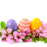 Handmade Easter Eggs frame with spring flowers,  Royalty Free Stock Photo