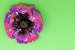 Handmade felt, flowers royalty free stock photo