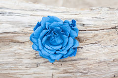 Handmade flower color leather brooch Stock Photography