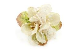 Handmade Flower For Wedding Favors. Handmade wedding favor isolated on white background Royalty Free Stock Images