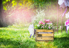 Handmade flowerbed with beautiful colored flowers inside, standing on the lawn in the park on a background blurred natural land Royalty Free Stock Photos