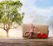 Handmade gift box on a fantasy landscape Royalty Free Stock Images