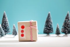 Handmade gift box in miniature evergreen forest Stock Images