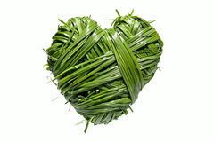 Handmade heart from grass Royalty Free Stock Photos